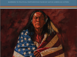 NAVRC: Analyzing the State of Native American Voting